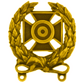 Tactical Gaming Advanced Training Medal