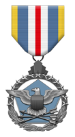 Tactical Gaming Valor Medal