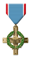 Tactical Gaming Vice Presidential Medal