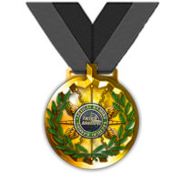Tactical Gaming Valor Medal