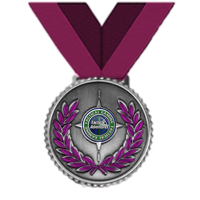 Tactical Gaming Training Office Achievement Medal